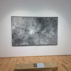 Linda Berger, Strichzeichnung 2016, Tusche, Federzeichnung auf Bütten, 152x250cm, 2016