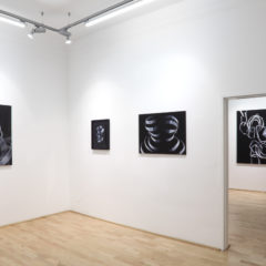 Anemona Crisan, Ausstellungsansicht Loft8, 2017