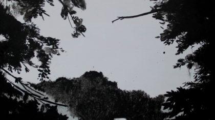 Pawel Mendrek, Secret, Acrylic on canvas, 100x100cm, 2017