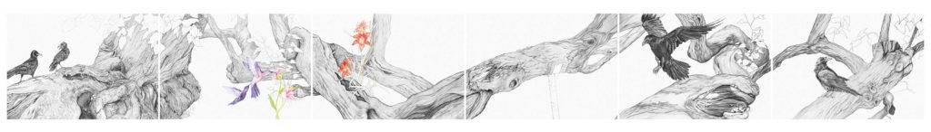 Birgit Pleschberger, Birdland, 2015, Polyptychon, sechsteilig, 70x600cm, je 70x100cm, Nero und Buntstift auf Papier